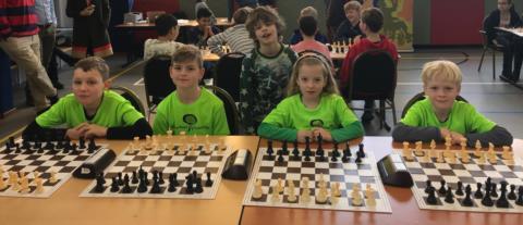 foto schaken.jpg